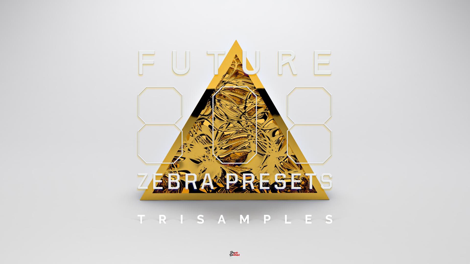 "Featured image for ""Future 808s (Zebra 2)"""